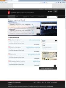 ICAEW-Dashboard-1.6